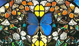 Butterfly wing art from Hirst