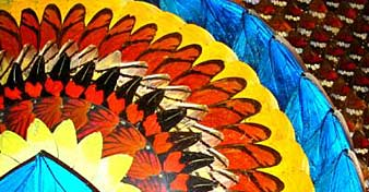 Butterfly wing art from butterfly-gifts.com